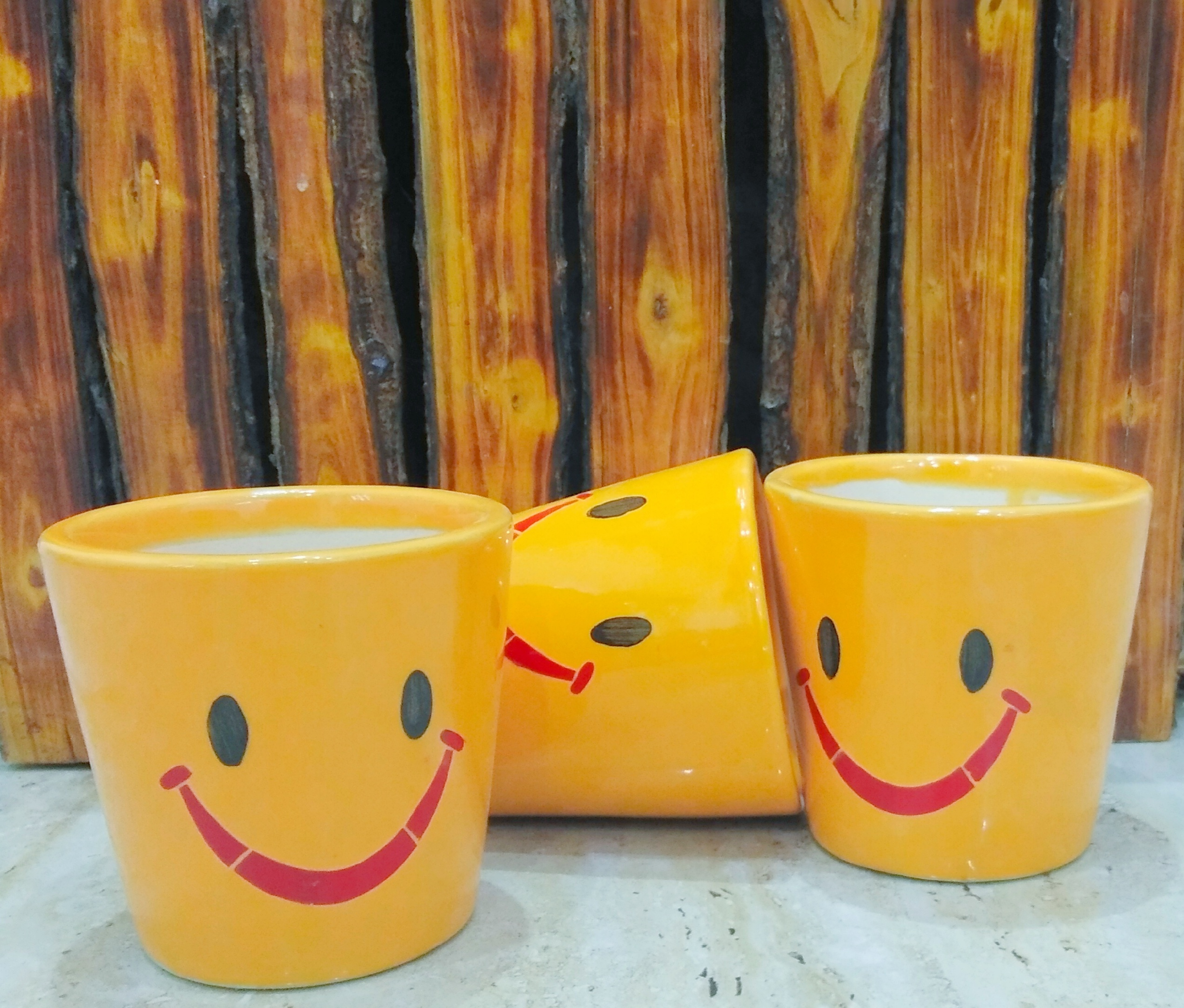 Baati Smiley Planter